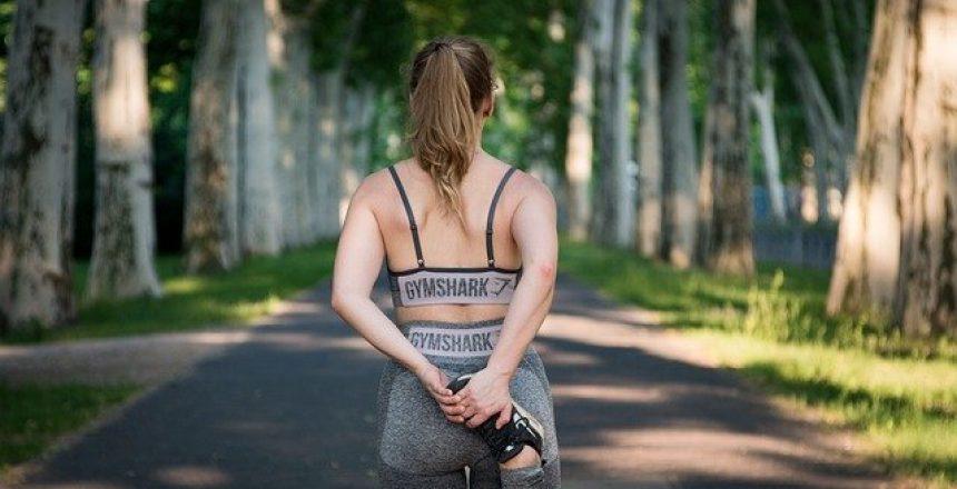 המדריך למתאמן המתחיל